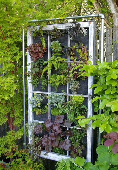 window gardening window frame as a vertical garden 1001 gardens