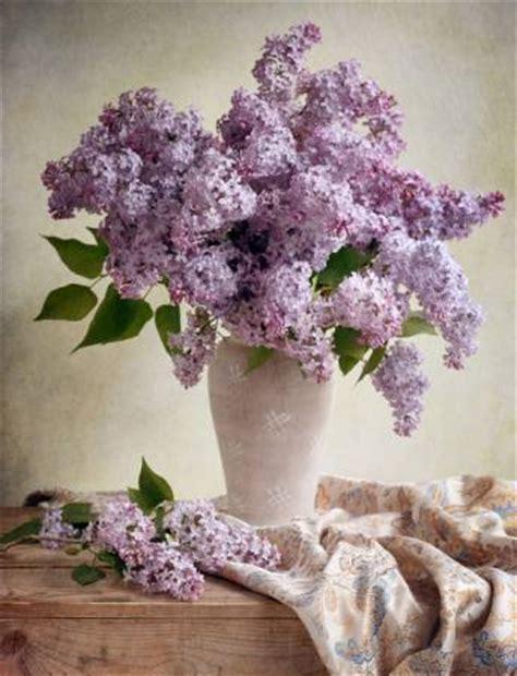 immer blühender garten pixwords das bild mit blumen vase lila tabelle tuch