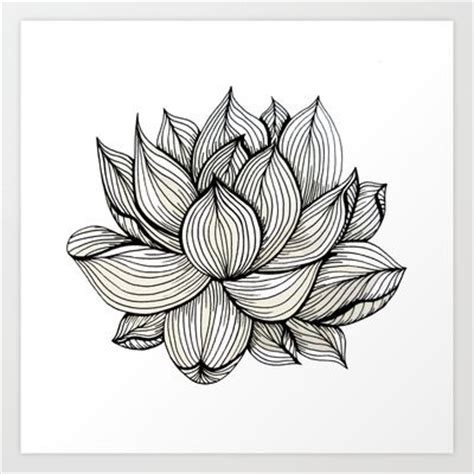 pattern in nature drawing lotus flower black and white nature organic design