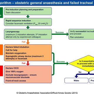 Obstetrics For Anaesthetists algorithm 2 obstetric failed tracheal intubation the yellow diamonds