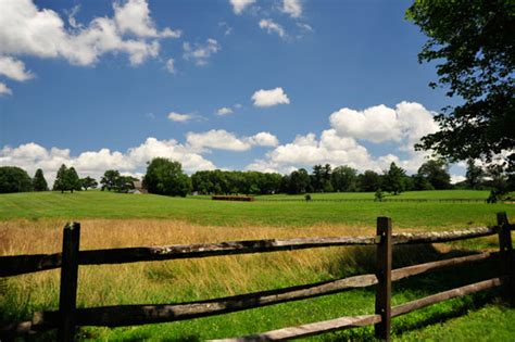photo of the week summer in the country chadds ford live