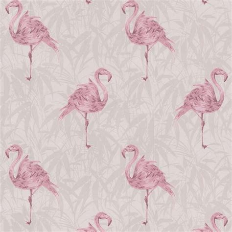 wallpaper pink uk 800x800px pink flamingo wallpaper wallpapersafari