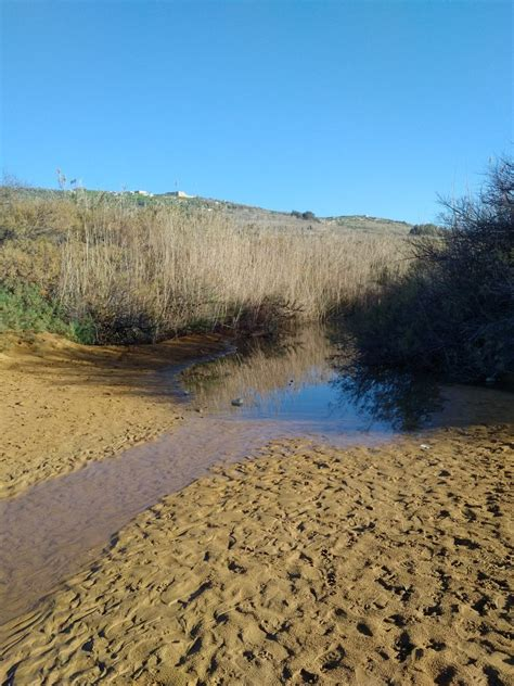 different valley pics ramla valley watercourse gozo images