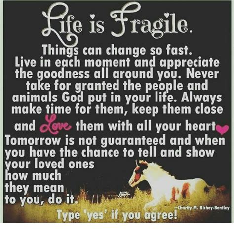 So This Is How They Do It All by Ife Is Jragile Can Change So Fast Live In Each Moment And