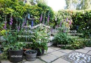 witches garden healer s craft