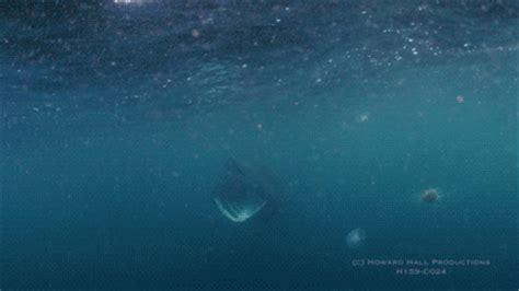 Gif Animals Science Sharks Biology Marine Biology Behavior - basking shark