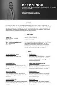 vice president of marketing resume sles visualcv