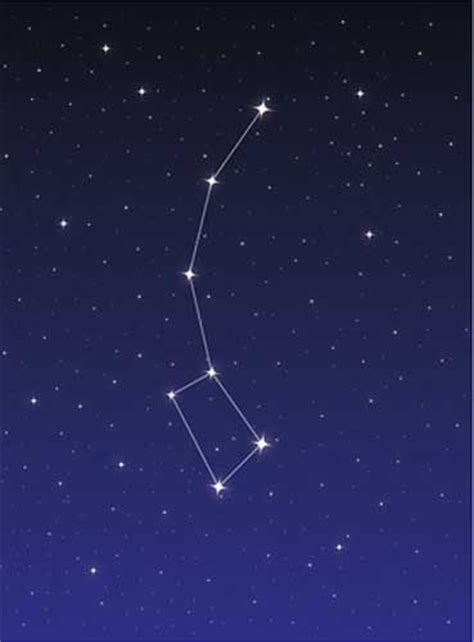 sternbild kleiner wagen 17 best images about sternbilder on pegasus