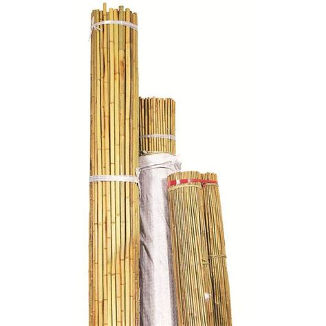Bamboo Herbal bond manufacturing 7 ft x 5 8 in bamboo package of 200 n715 the home depot