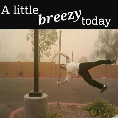 Wind Meme - 17 images about funny weather memes on pinterest cold