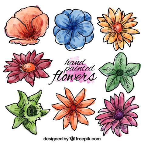 imagenes flores pintadas flores de primavera pintadas a mano descargar vectores