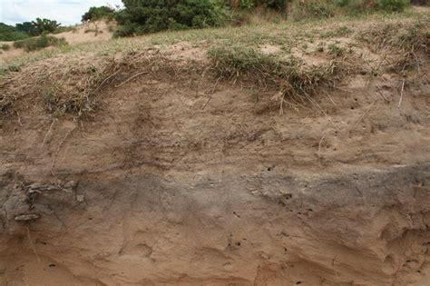 gower  cliffs bay sandy soil profile