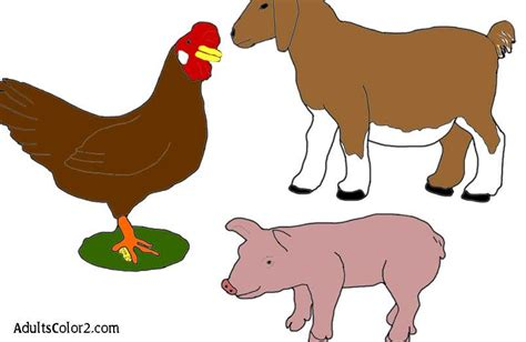 barnyard in your backyard download barnyard in your backyard pdf free andromalmeena