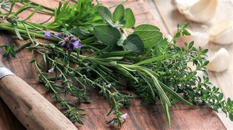 Les Herbes De Provence by Herbes De Provence Origine Utilisation En Cuisine Et