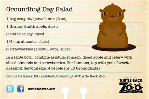 groundhog day the meaning groundhog day meaning 28 images groundhog day vic and