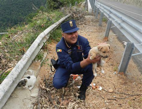 comune di longobucco web longobucco cs rinvenuti dal personale della polizia