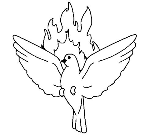 flood dove coloring coloring pages