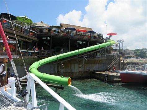 dreamer catamaran tours jamaica margaritaville picture of dreamer catamaran cruises