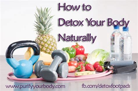 How To Detox Your From Gmos by How To Detox Your Naturally Purify Your