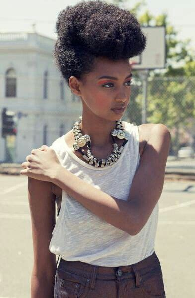 everyday hairstyles for afro hair 44 best natural hair updo images on pinterest hair dos