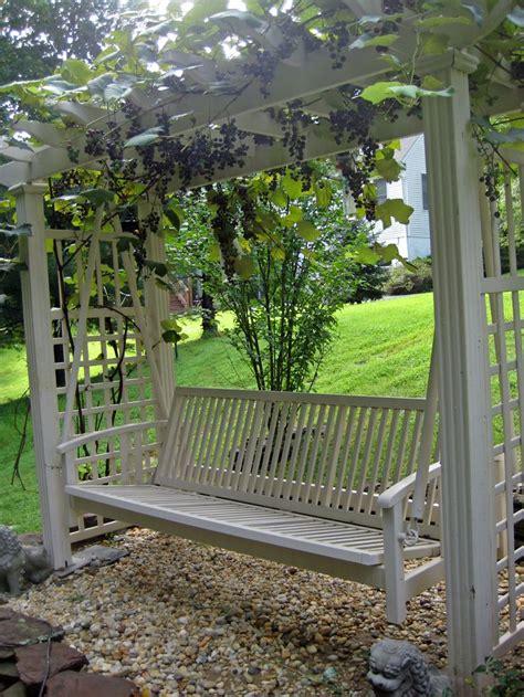 backyard vines 25 unika grape arbor id 233 er p 229 pinterest bers 229 er och spalj 233