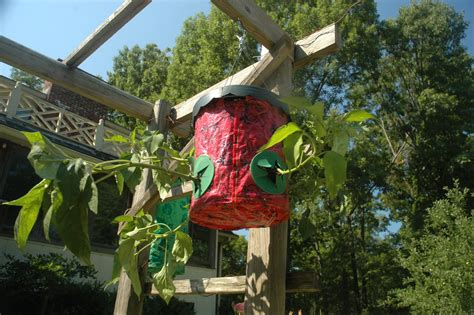 Topsy Turvy Pepper Planter by Family Gardening Update Number Two How To