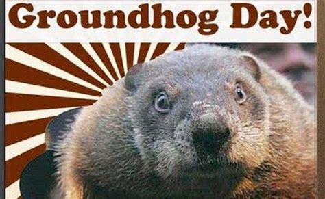 groundhog day repeat best 25 groundhog day ideas on