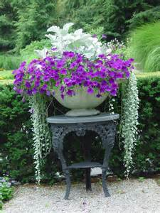 Plant Combination Ideas For Container Gardens Stunning Plant Combinations For Your Containers Bungalow Home Staging Redesign
