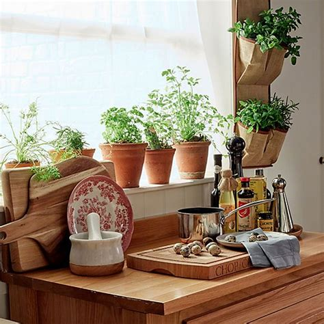 bring life   house  living plants home
