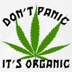 Funny marijuana t shirt grandpa s designer t shirts