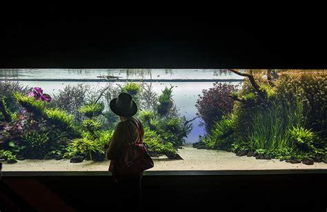 balsan design concept xxl temporary exhibition 187 exhibitions 187 ocean 225 rio de lisboa