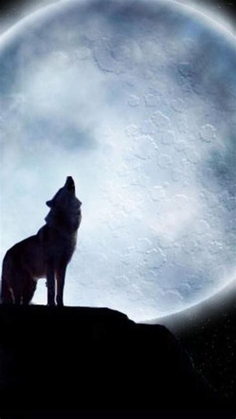 wallpaper iphone wolf wolf wallpaper for iphone 72 images
