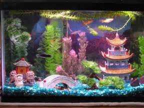 decoration how to create aquarium decoration themes