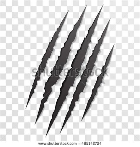 claw scratch stock images royalty free images amp vectors