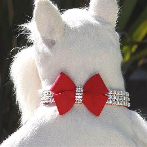 Setelan Piyama Pajamas Paul Frank Jumbo Xl susan lanci jumbo nouveau bow giltmore collar at glamourmutt