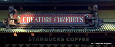 creating comforts photo tour animal kingdom starbucks now open the disney