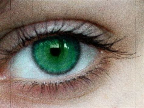 Bright Green Contacts - until the end m o s s y eye oc
