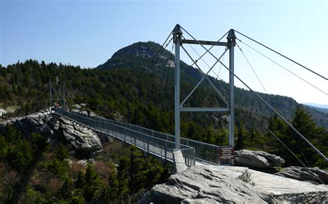 mile high swinging bridge savoring the wildlife on grandfather mountain