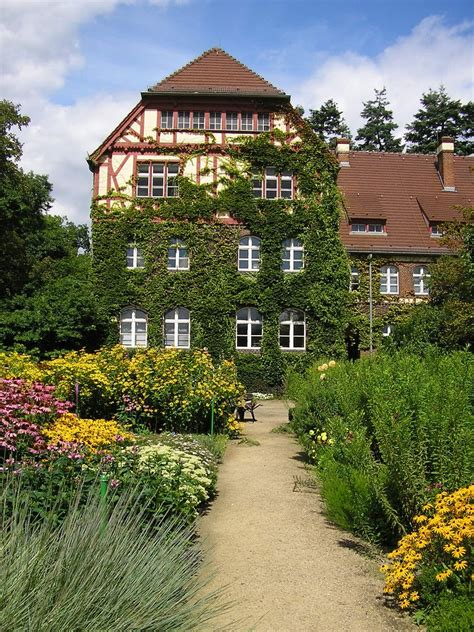 public domain   images botanical garden berlin