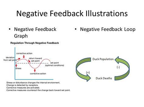 feedback diagram graph negative feedback physiology wiring diagrams