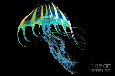 Jellyfish Home Decor by Yellow Striped Jellyfish Painting By Corey Ford