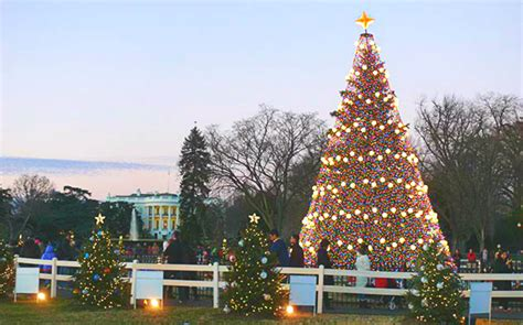 free ticket lottery opens for 2017 national christmas tree