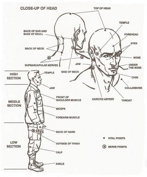 point to diagram human pressure points diagram anatomy organ
