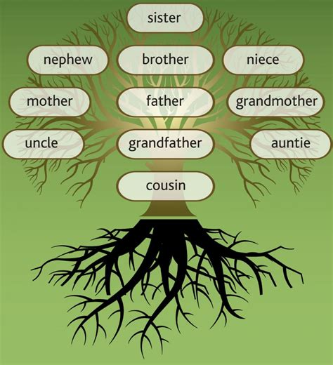 How To Find A Record Of A Family Member Steps In Gathering The Family Tree Leaves Familytree