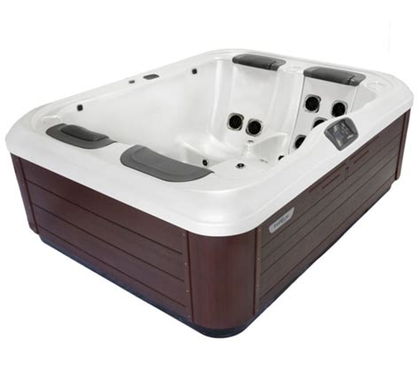 Backyard Leisure Greensboro - bullfrog spa model r5l affordable 3 person tub backyard leisure