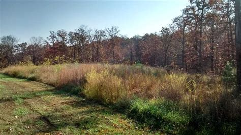 boats for sale near murray ky 2 44 acres residential land for sale calloway county