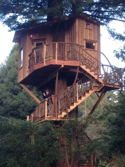 real treehouse look at this treehouse lost coast outpost humboldt county