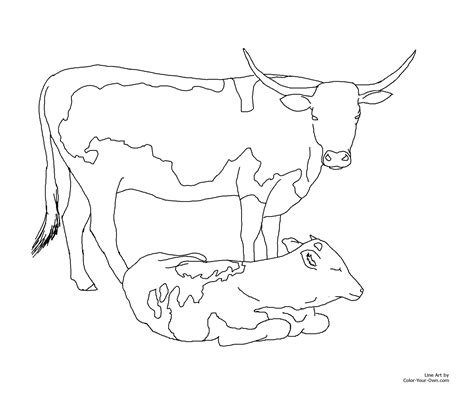 coloring pages of cow and calf longhorn cow and calf coloring page memes