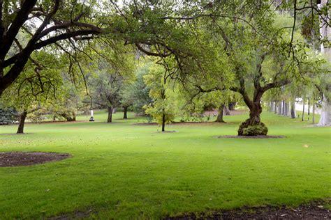 Botanic Gardens And Parks Authority Botanic Gardens And Parks Authority Fraser Avenue Lawn