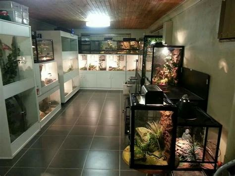 Reptile Rooms by Sweet Reptile Room Style Reptile Room